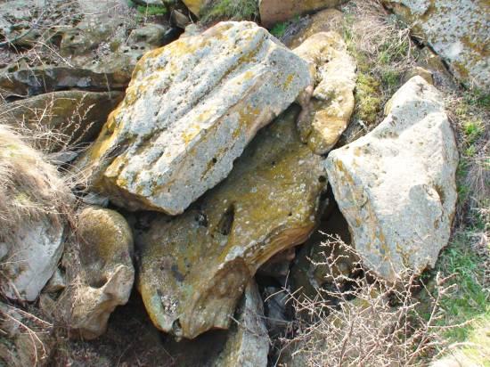 Луб'янскі камені